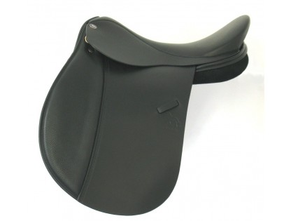 Matrix Saddles